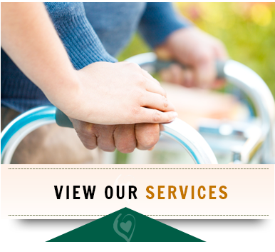 meridian idaho home health services